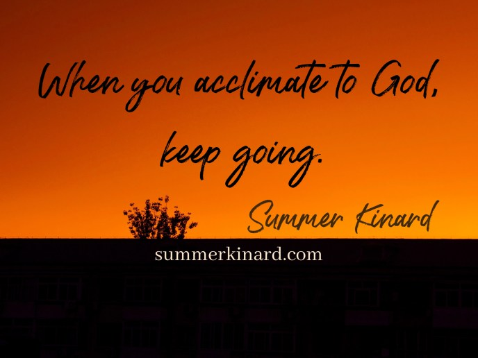 horizon with sunset or sunrise and silhouette of a shrub, text reads When you acclimate to God, keep going. Summer Kinard summerkinard.com