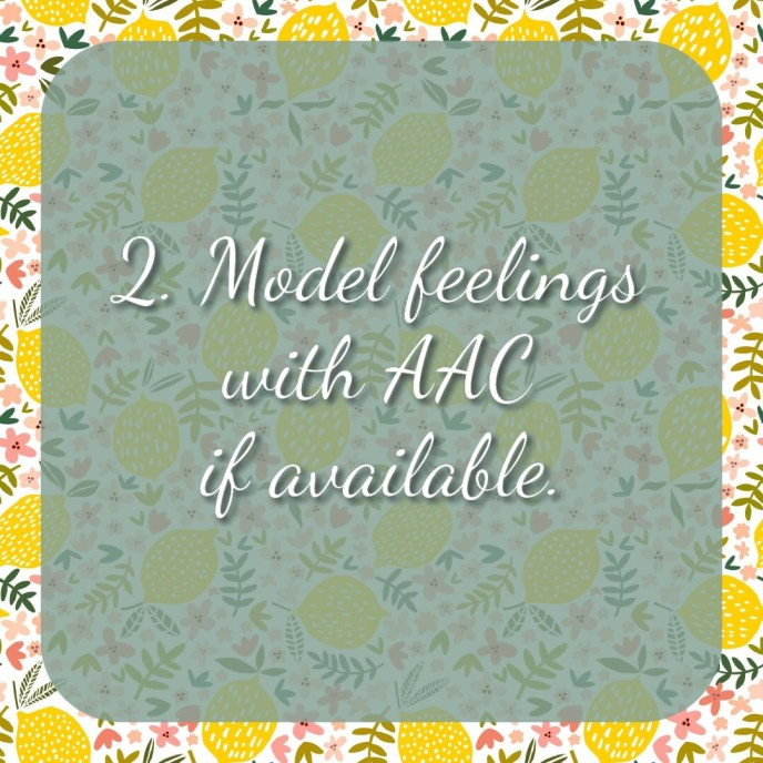 2. Model feelings with AAC if available.