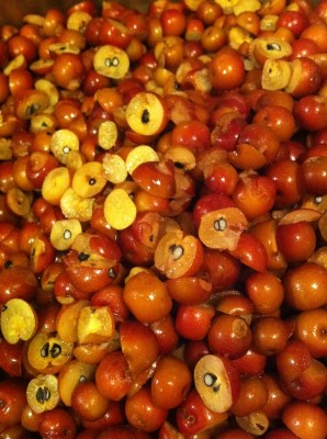 Cleaned and Chopped Crab Apples