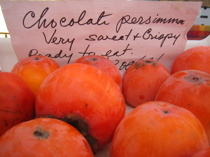 chocolate persimmons