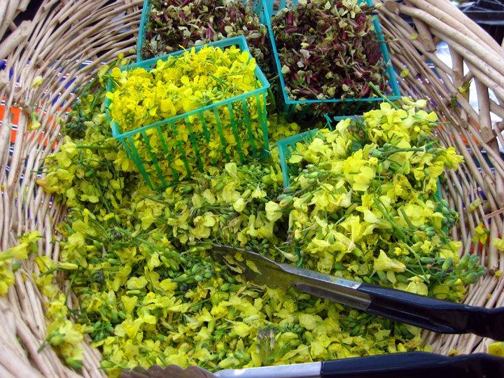 broccoli and arugula flowers