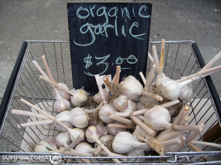Image result for organic garlic