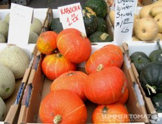 Orange & Green Kabocha Squash