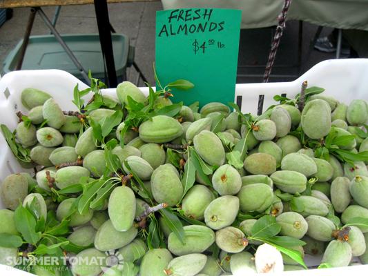 Fresh Thyme Farmers Market Careers