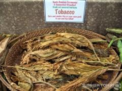 Dried Heirloom Tobacco