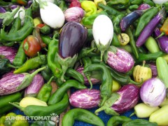 Eggplants and Peppers