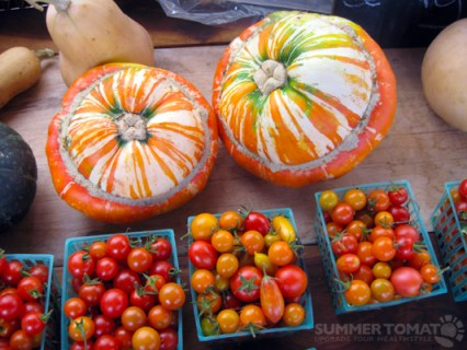 Pumpkins and Tomatoes