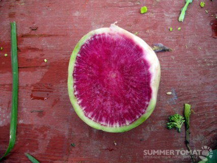 Watermelon Radish Slice
