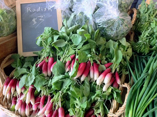 Radishes from Harvestland Farm