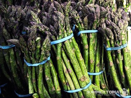 Artistic Asparagus