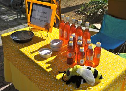 Honey from Apiarios El Pancho