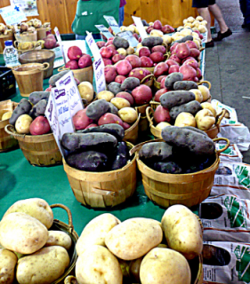 Local Potatoes