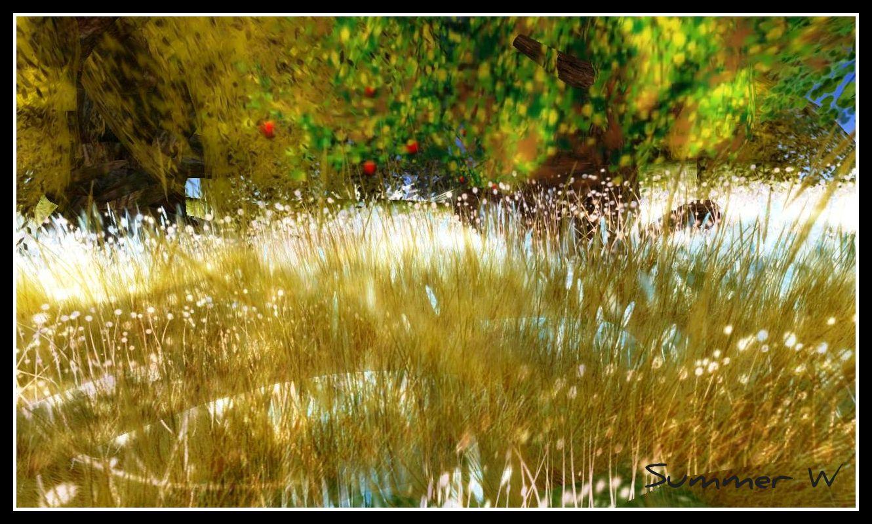 alirium-gardens-x-framed