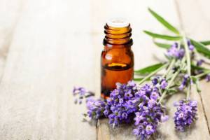 Lavender essential oil in the amber bottle, with fresh lavender flower heads