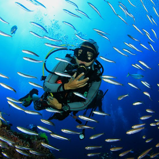 Buceo-550×550