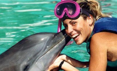 Dolphin Experience Punta Cana