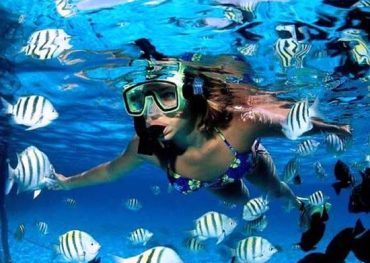 catalina snorkel