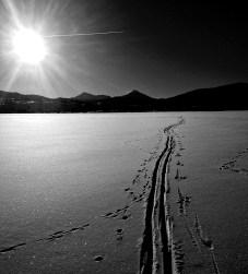 Tracks ...