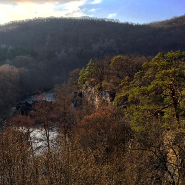 Thayatal National Park.