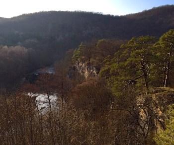 Canyon of the Thaya.