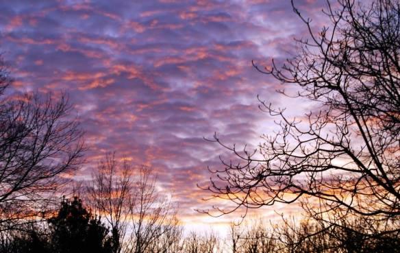 Watercolor skies over Lexington