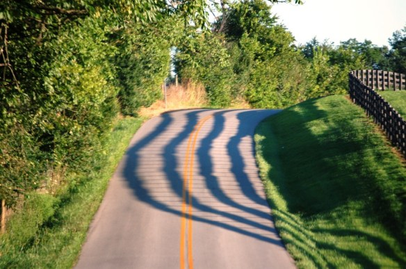 Afternoon shadows on a late summer day