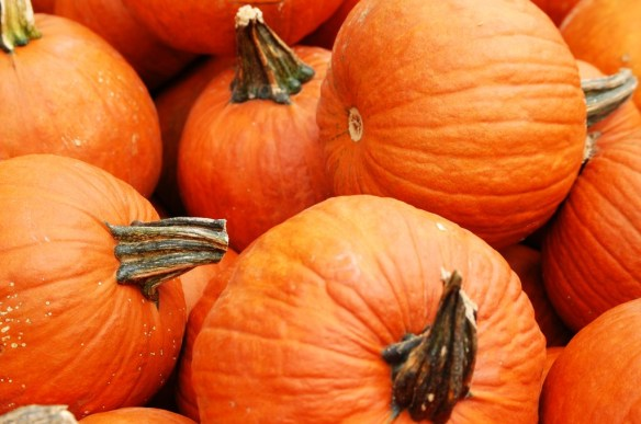 What is Autumn without the pumpkins?