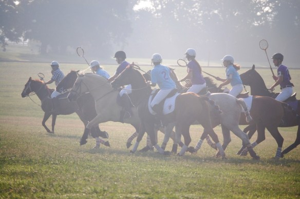 Polo Cross at the Kentucky Horse Park - we broadcast a number of Pony Club events.  Was great fun.