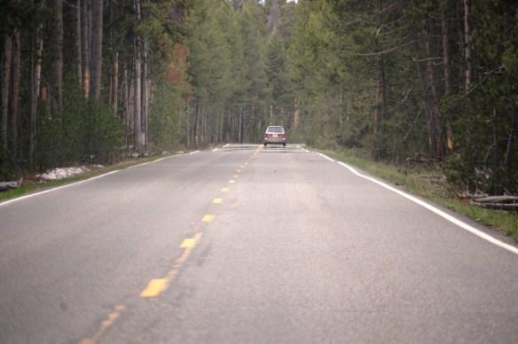 Grand Loop Rd Yellowstone-X2