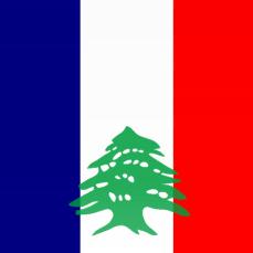 BeirutSupport