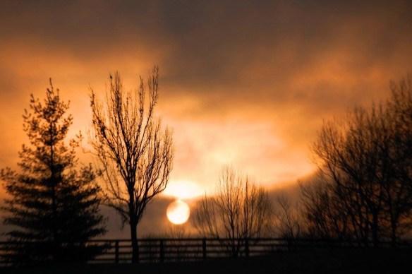 Foggy Sunrise as seen from Delong Road near Lexington