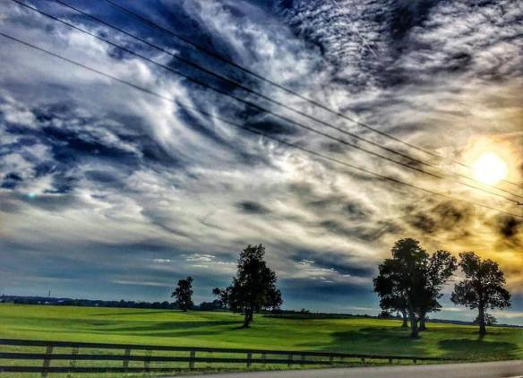Horse Farm Country