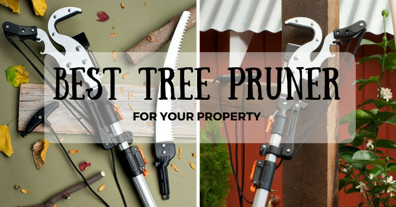 Best tree pruner on the market