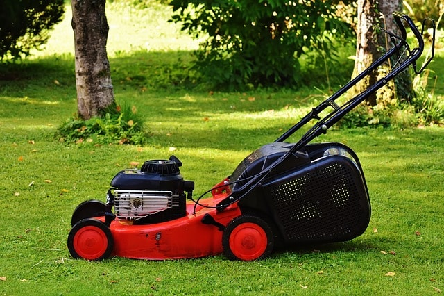 How To cut the grass properly before applying fertilizer