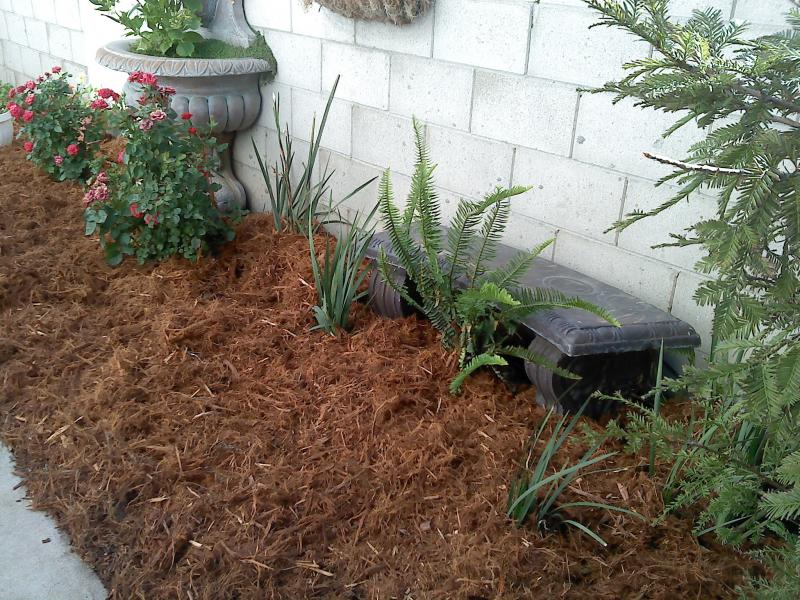 Gorilla Hair Mulch Helps in Maintaining the Nutrients in the Soil