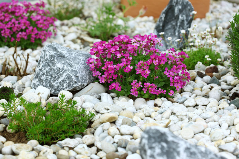 Benefits of rocks in garden