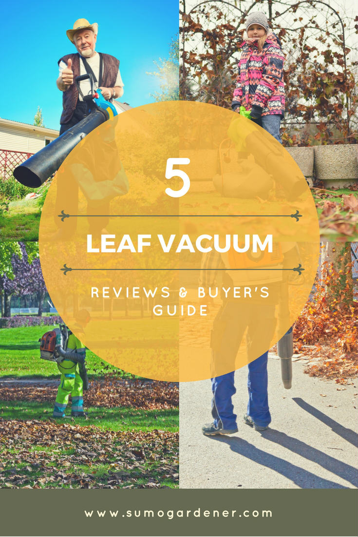 Leaf blower reviews & buyer's guide