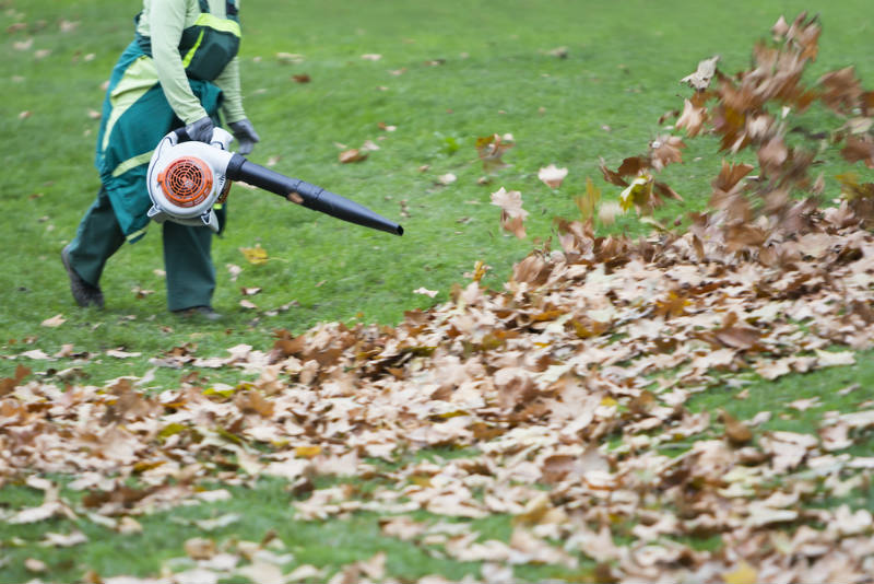 Types of Leaf Blower to Choose