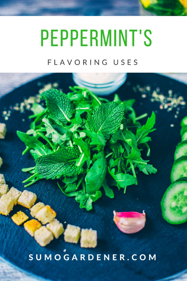 Peppermint's Flavoring Uses