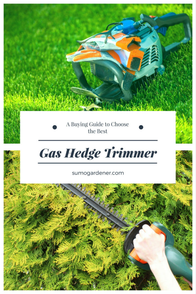 Best Gas Hedge Trimmer buyer's guide