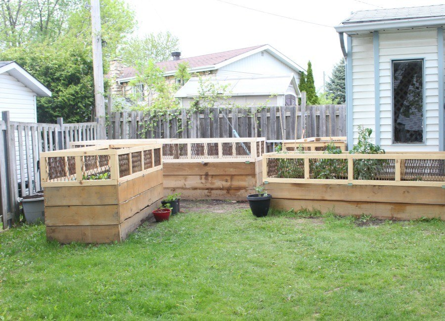 Raised Garden Beds for the summer - LadyMarielle