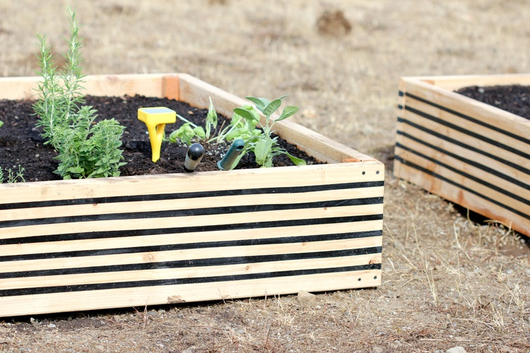 DIY Raised garden beds - Delia