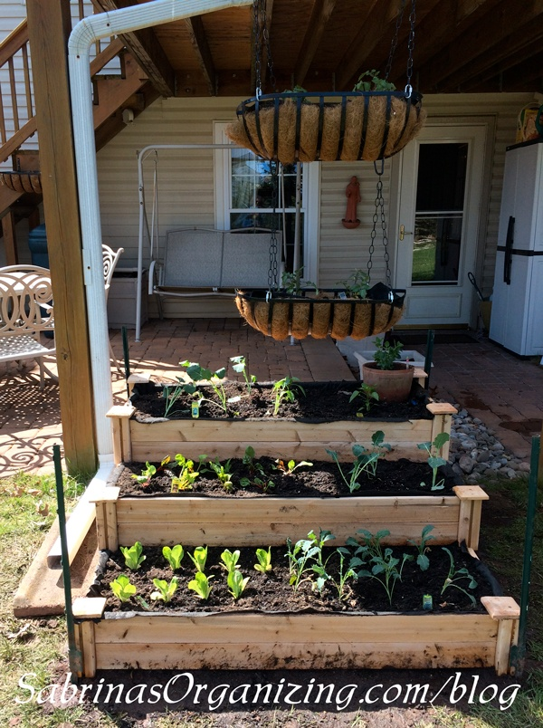 DIY Raised garden beds - Sabrina's Organizing