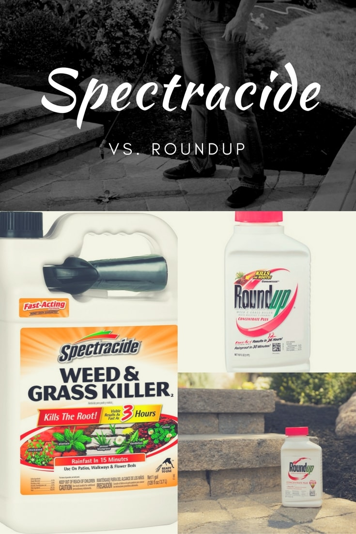 What is the difference between Spectracide vs Roundup