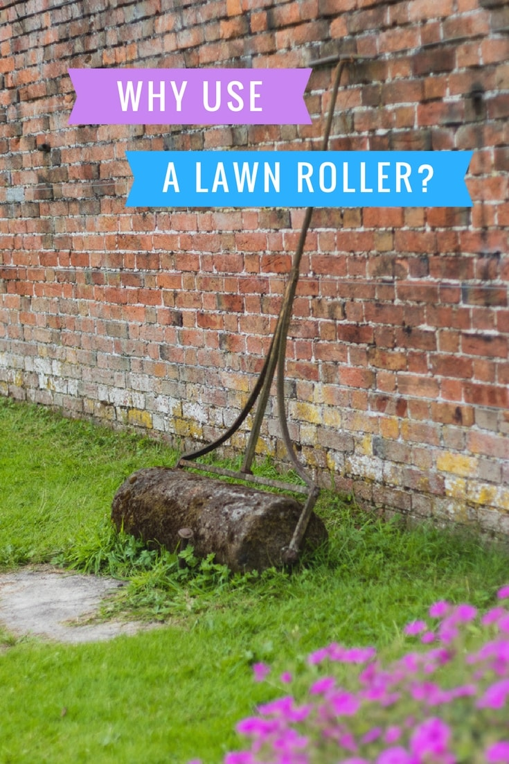 Why use a Lawn Roller?