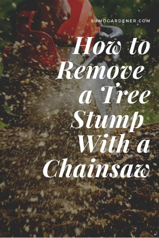 How to Remove a Tree Stump with a Chainsaw