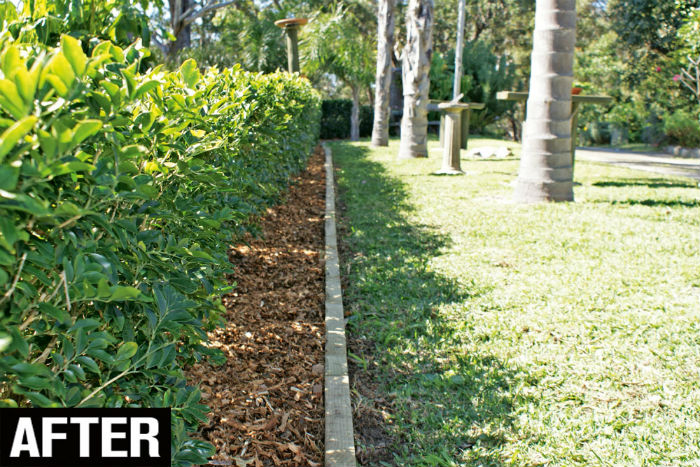 Landscaping Lay Timber Edging