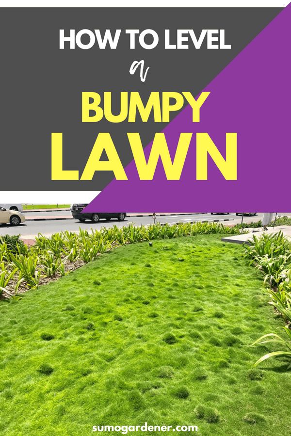 how to level a bumpy lawn 2 1