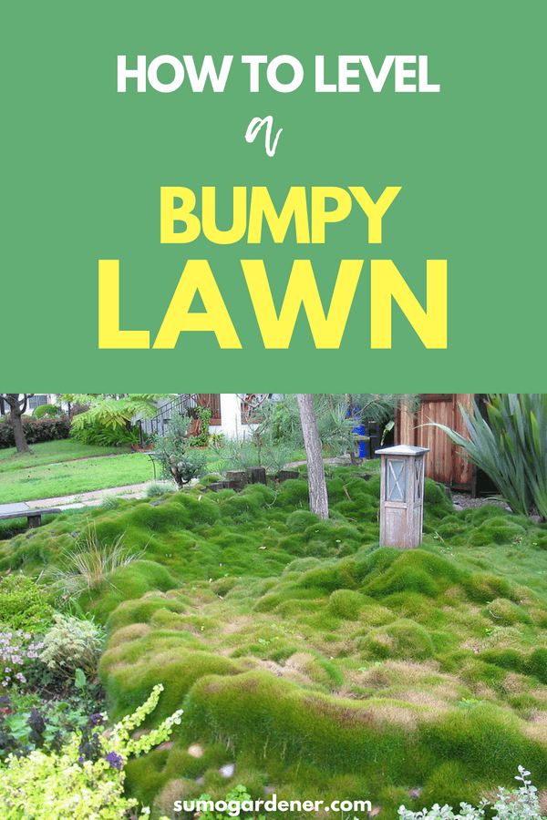 how to level a bumpy lawn 2 3
