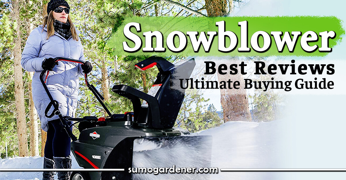 Snowblower Reviews